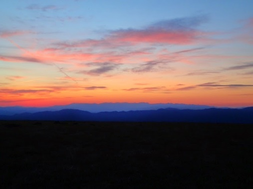 Max Patch 4